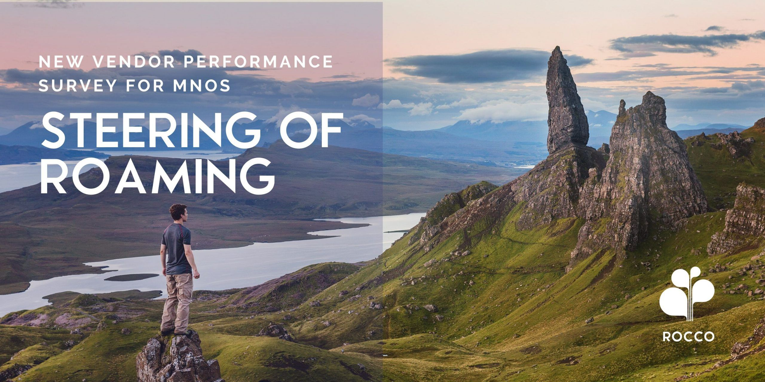 LAUNCH: Steering of Roaming Vendor Performance 2020